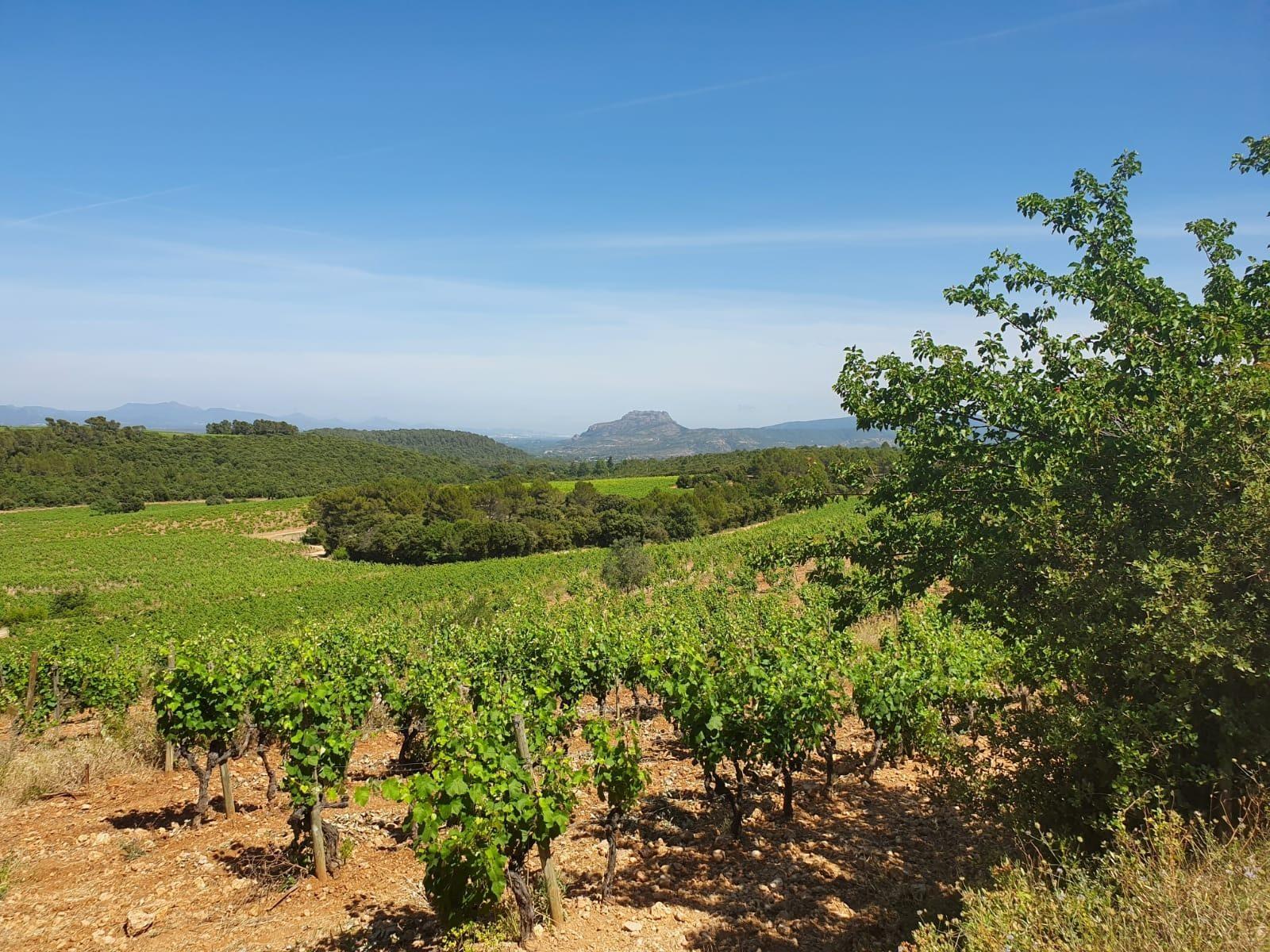A Var-y Good Weekend in Provence