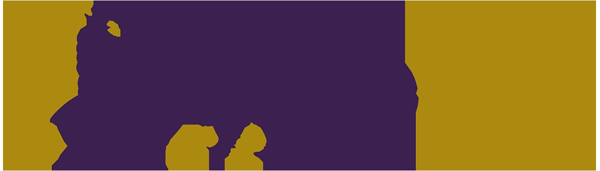 vigneview.com