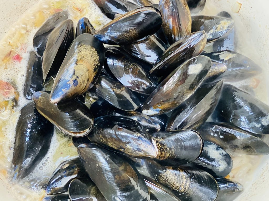 scrubbed mussels