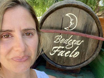 Bodegas Faelo ~ Alicante DOP, Spain